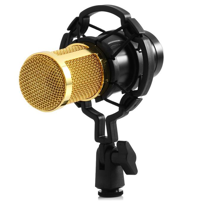 Mic thu âm giá rẻ TPHCM BM-800